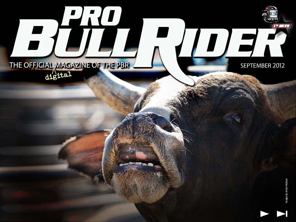 bull rider wallpapers 61 wallpapers � wallpapers 4k